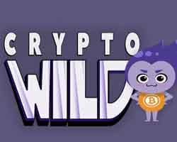kryptowild casino